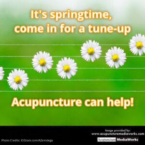 springtime-tune-up